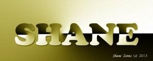 shane zentz logo papercut